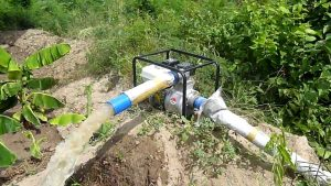 mejores motobombas para riego agricola